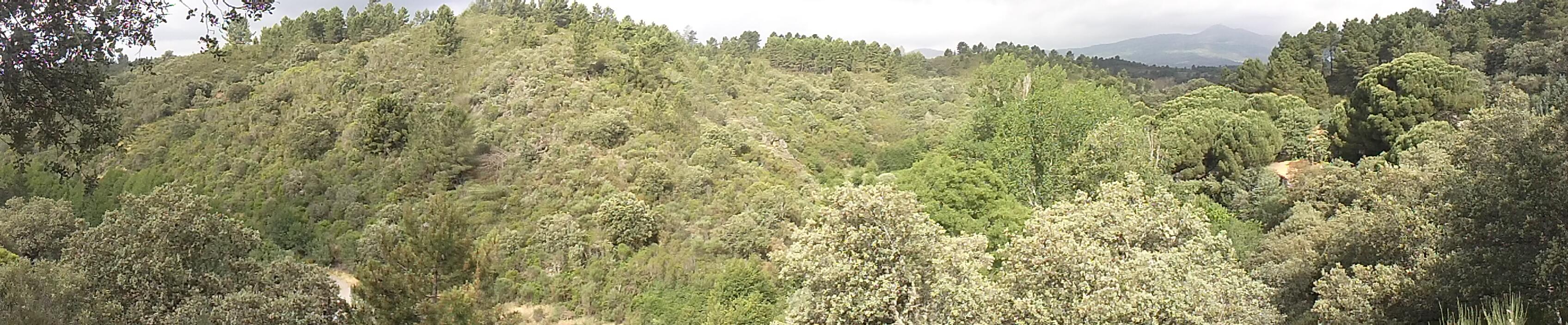 Campamento Verano, Escuela del Bosque, Hernán-Pérez, Sierra de Gata,